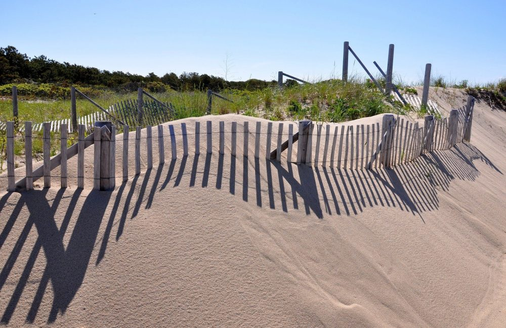 Cape Cod Sand Dunes - the best time to visit cape cod on a budget