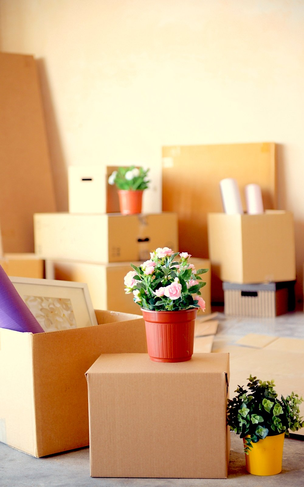 How to Prep for Moving in the Greater Boston Area, Simply Nel Belle