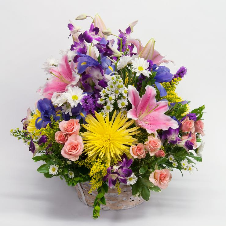 Mother's Day Gift Ideas, Brattle Square Florist, Mixed Basket