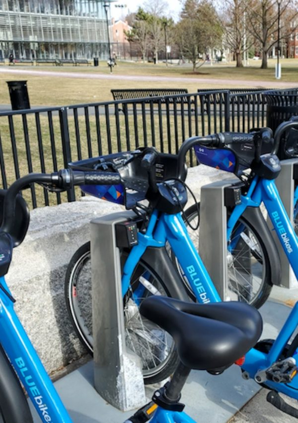 A Guide to BLUEbike Rentals in Metro Boston