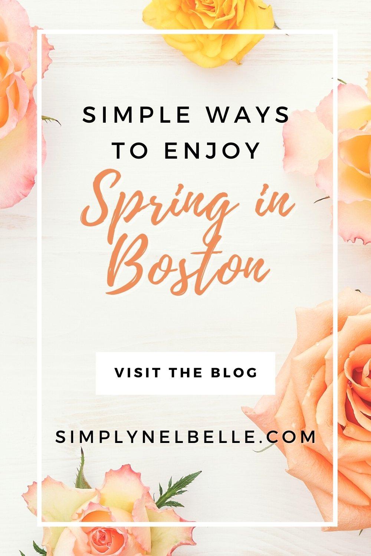 Spring in Boston, Spring Flowers Boston, MA.